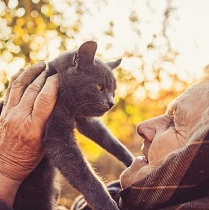 7 Little Ways to Help Someone With Dementia Right Now 211